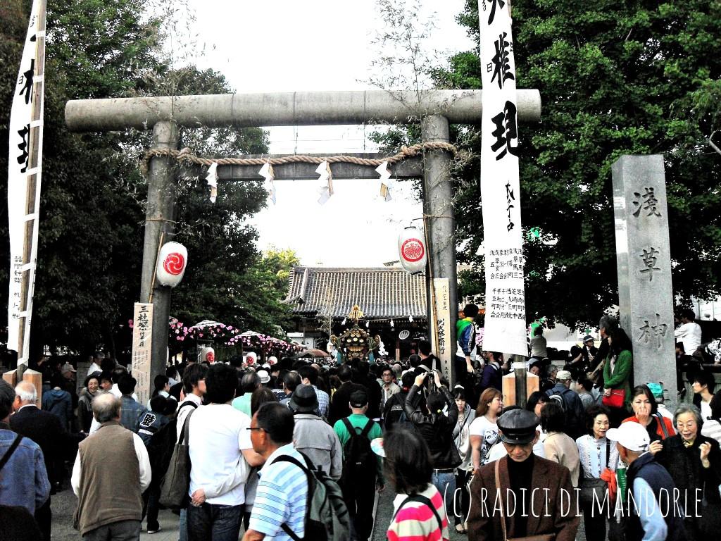 Sanja matsuri, Asakusa, Tokyo, Radici di mandorle