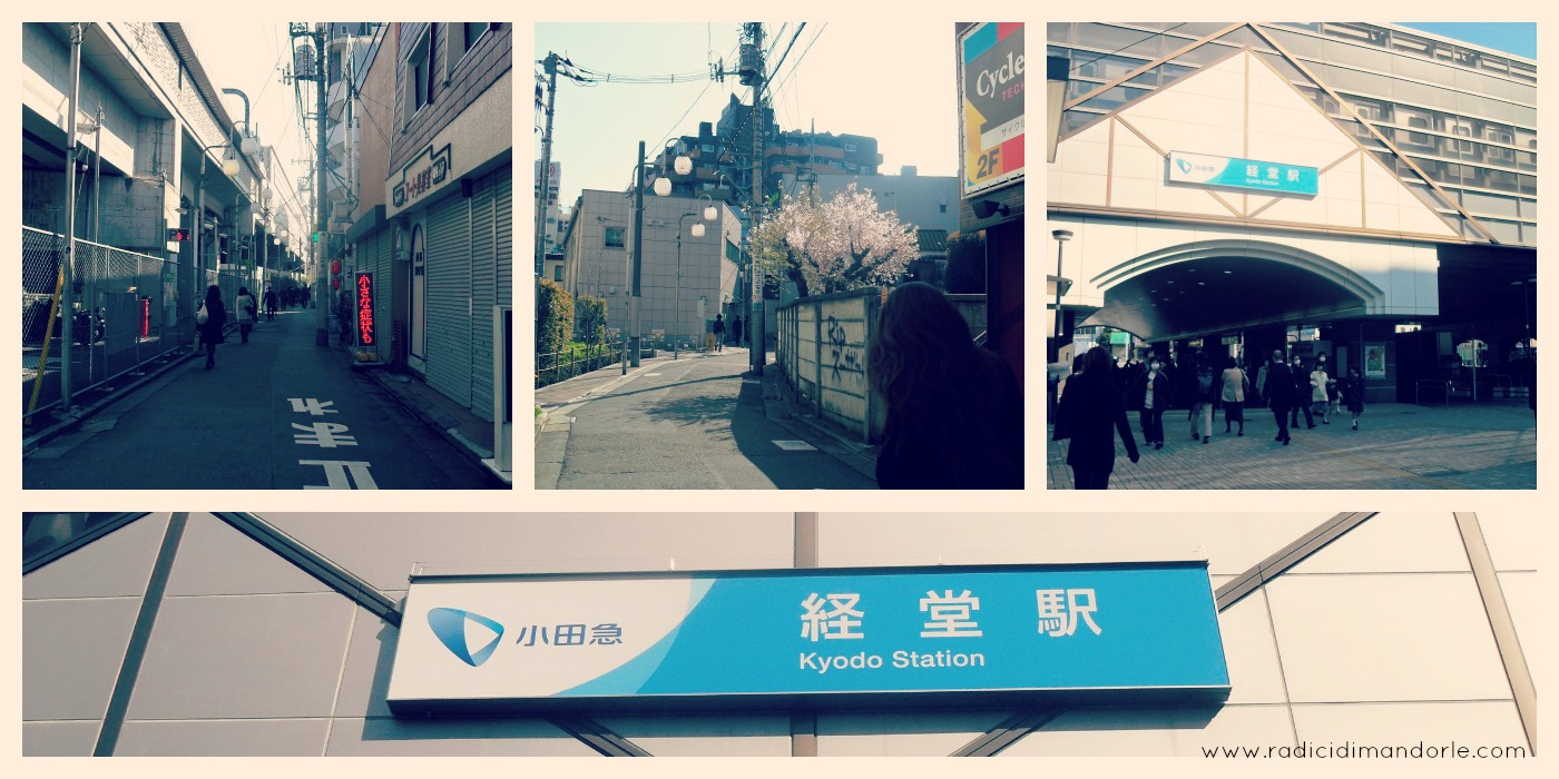 Kyodo Station, Setagaya, Tokyo, japan, giappone, train