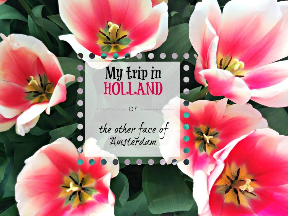 Il mio viaggio in Olanda (video)
