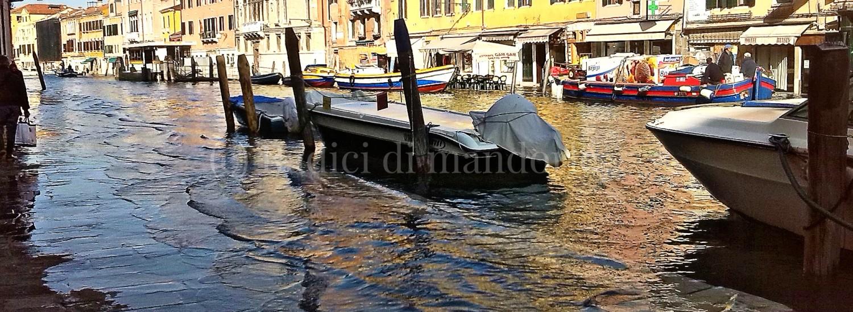 acqua alta a Venezia radici di mandorle
