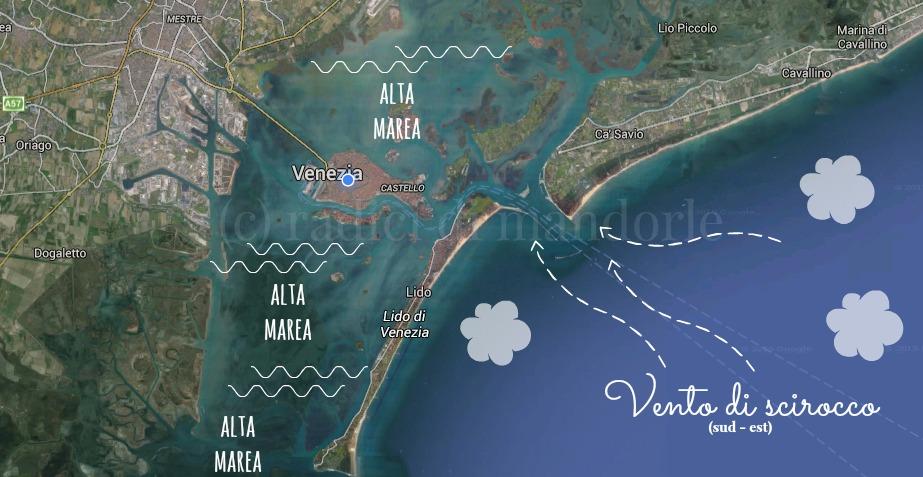 acqua alta a Venezia 3 radici di mandorle