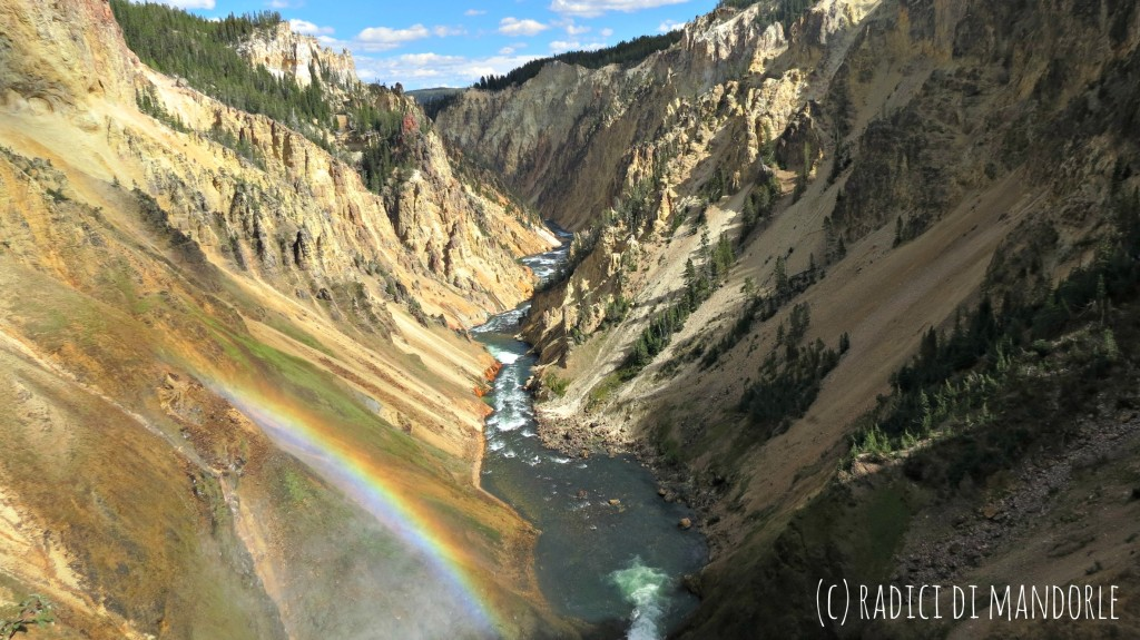 Canyon of Yellowstone National Park
