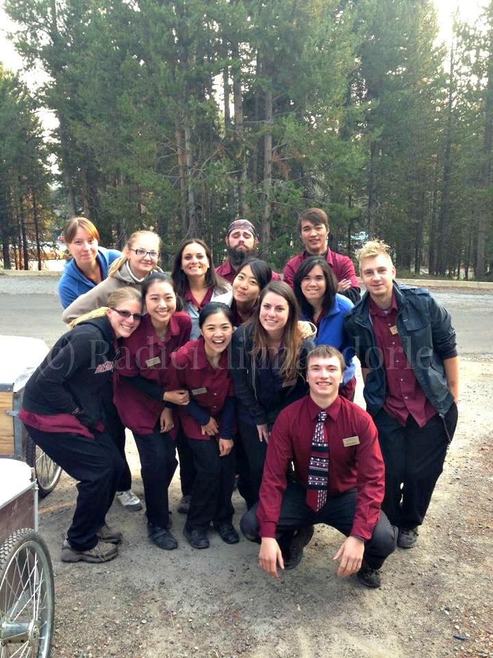 Work and Travel USA Yellowstone National Park Radici di mandorle